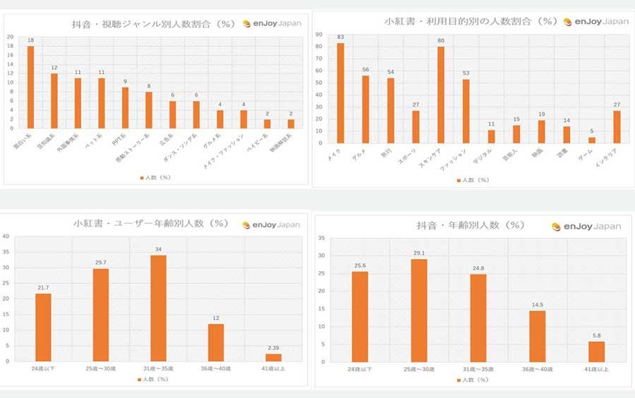 中国SNSユーザー調査資料の例